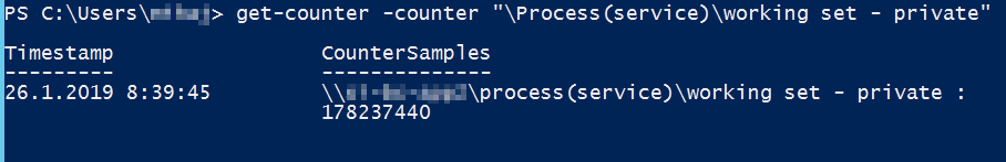 Get working set counter from service.exe process